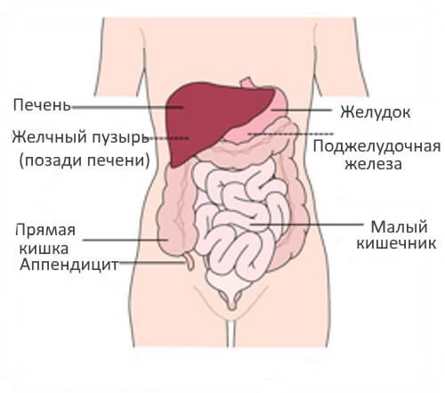 Почему у женщин возникает боль внизу живота справа?