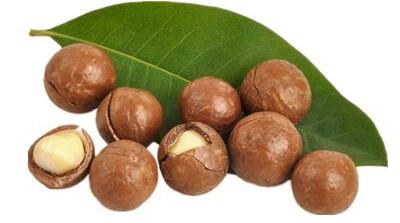 Чем полезен орех макадамия для женщин
