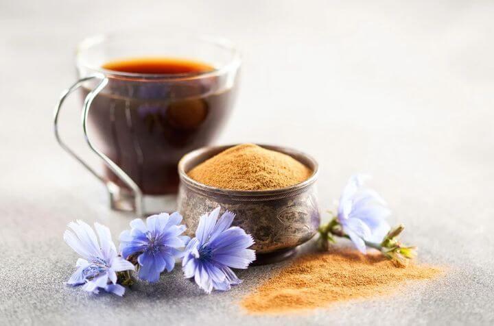 Цикорий - полезные свойства и противопоказания для женщин